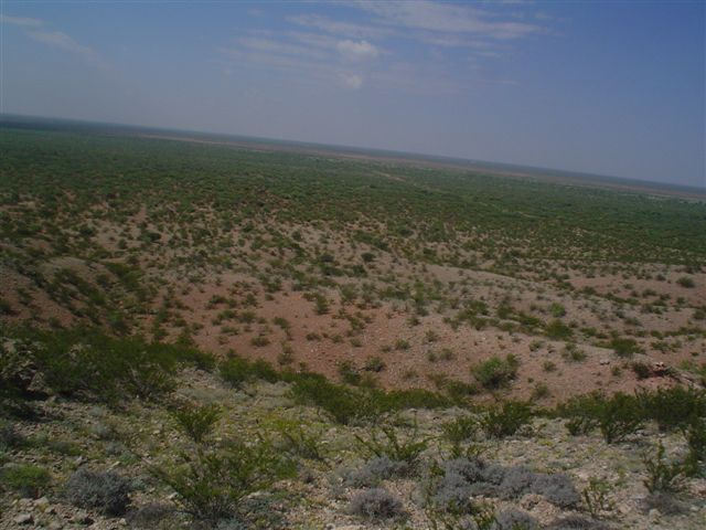 20 acres residential land reeves county tx land and for Free land in texas