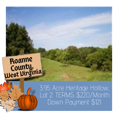 Land for sale in Roanne County West Virginia