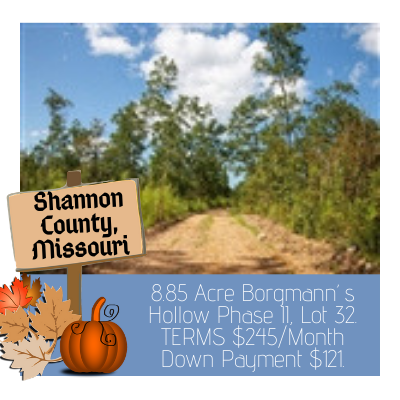 Land for sale in Shannon County Missouri