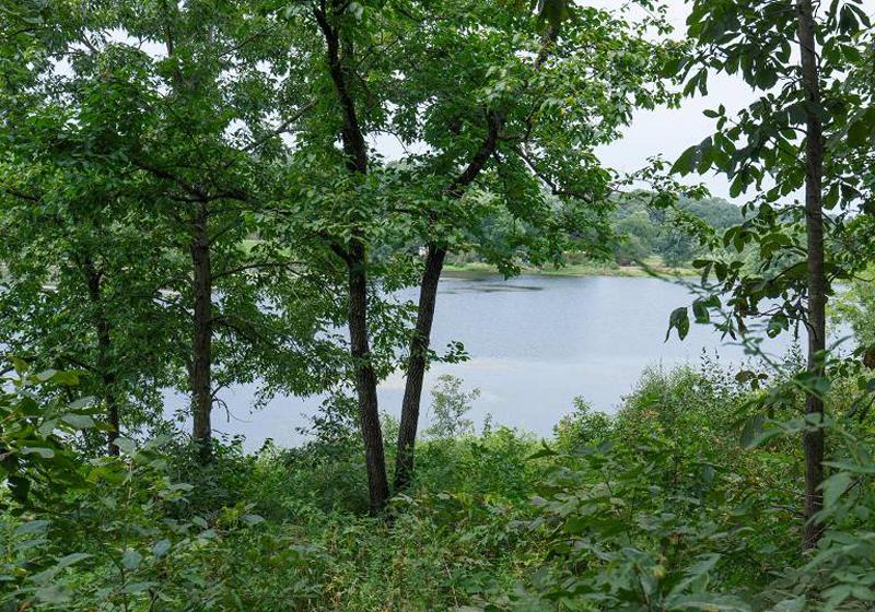 Spring Lake 4